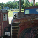 Long forgotten truck in shade on day 2. Staunton, IL.