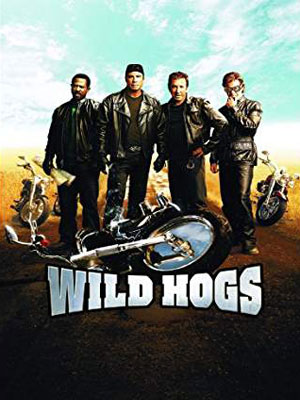 Wild Hogs, 2007, movie, route 66