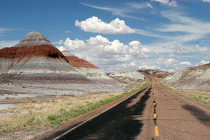 driving usa america route 66: petrified forest NP